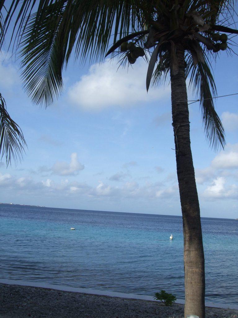 a beautiful tropical beach: NOT in Cape Verde (It's in Bonaire.)
