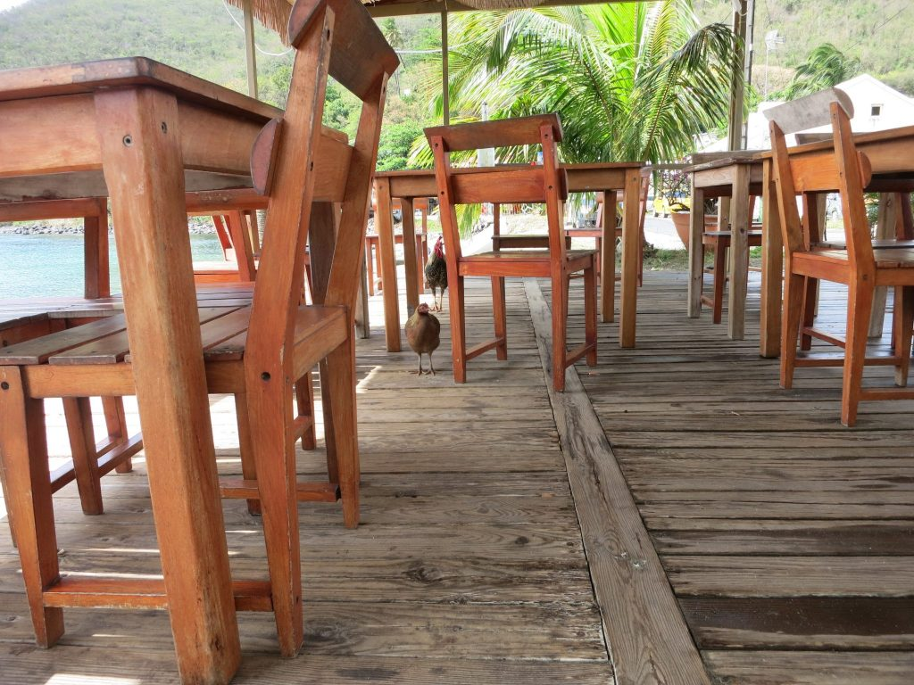 "View of the restaurant used in ""Death in Paradise,"" empty except for some chickens."