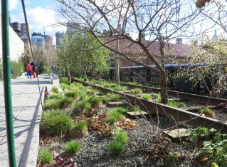 The High Line: an unusual New York City park