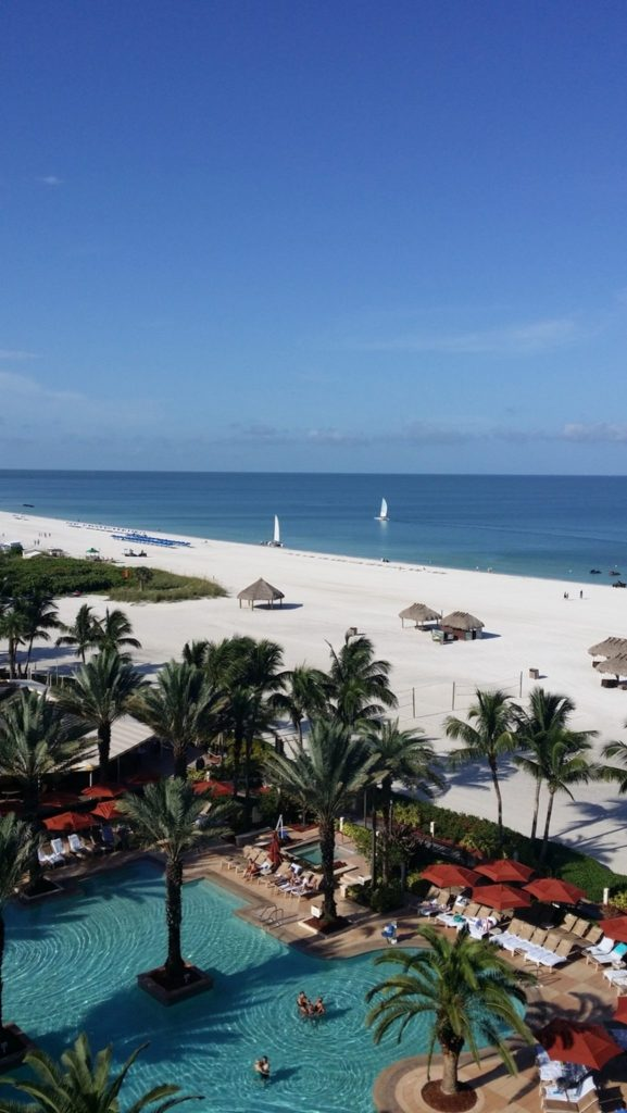 view overlooking the pool and beach with palm trees, etc. on Marco Island