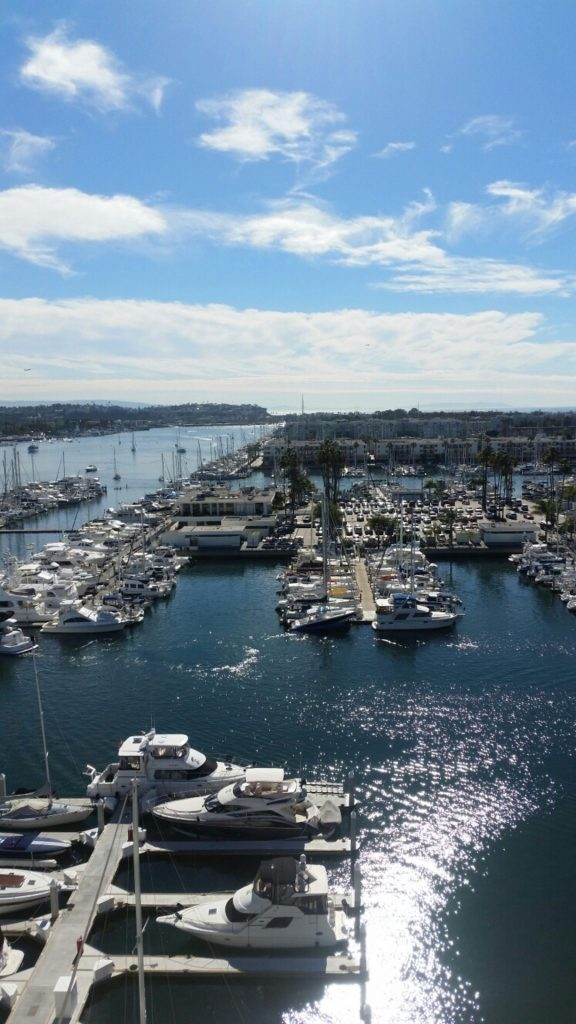 boats in the harbor in Marina del Rey