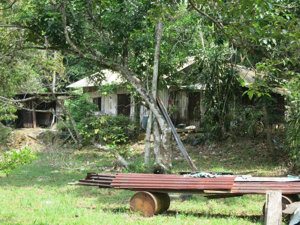 a house on Pulau Ubin: not in great condition