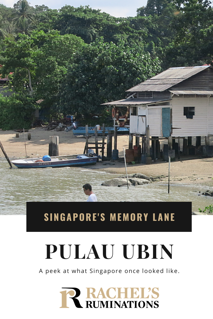 A day trip to Pulau Ubin, Singapore, is a trip into the city's past. Spend a day bicycling and exploring this quiet island getaway. #PulauUbin #Singapore #daytrip #traveltips #citytrips via @rachelsruminations