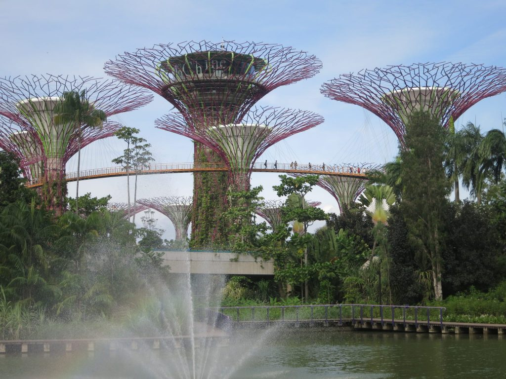 a group of Supertrees at Garden by the Bay in Singapore