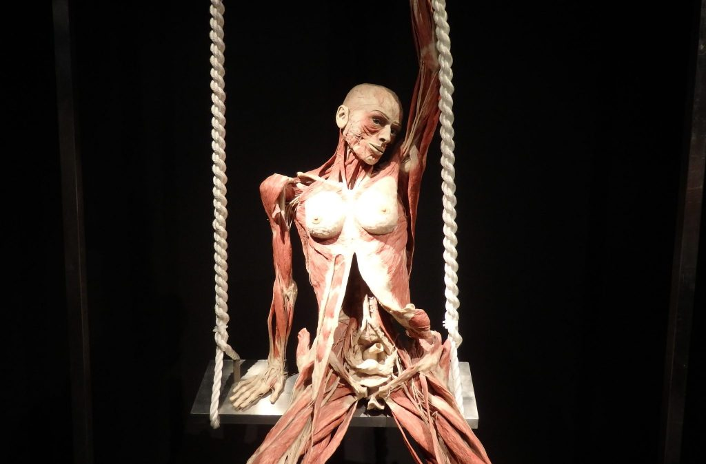 The woman sits on a wooden swing. Her breasts are exposed. She sits with her legs apart, showing the leg muscles and revealing her genitals. Her belly cut vertically open. Inside the open belly the uterus and other organs are visible. She has one arm straight down, as if supporting herself on the seat beside her butt. The other arm is straight up, holding the rope of the swing up above her head. Her head leans toward that arm.