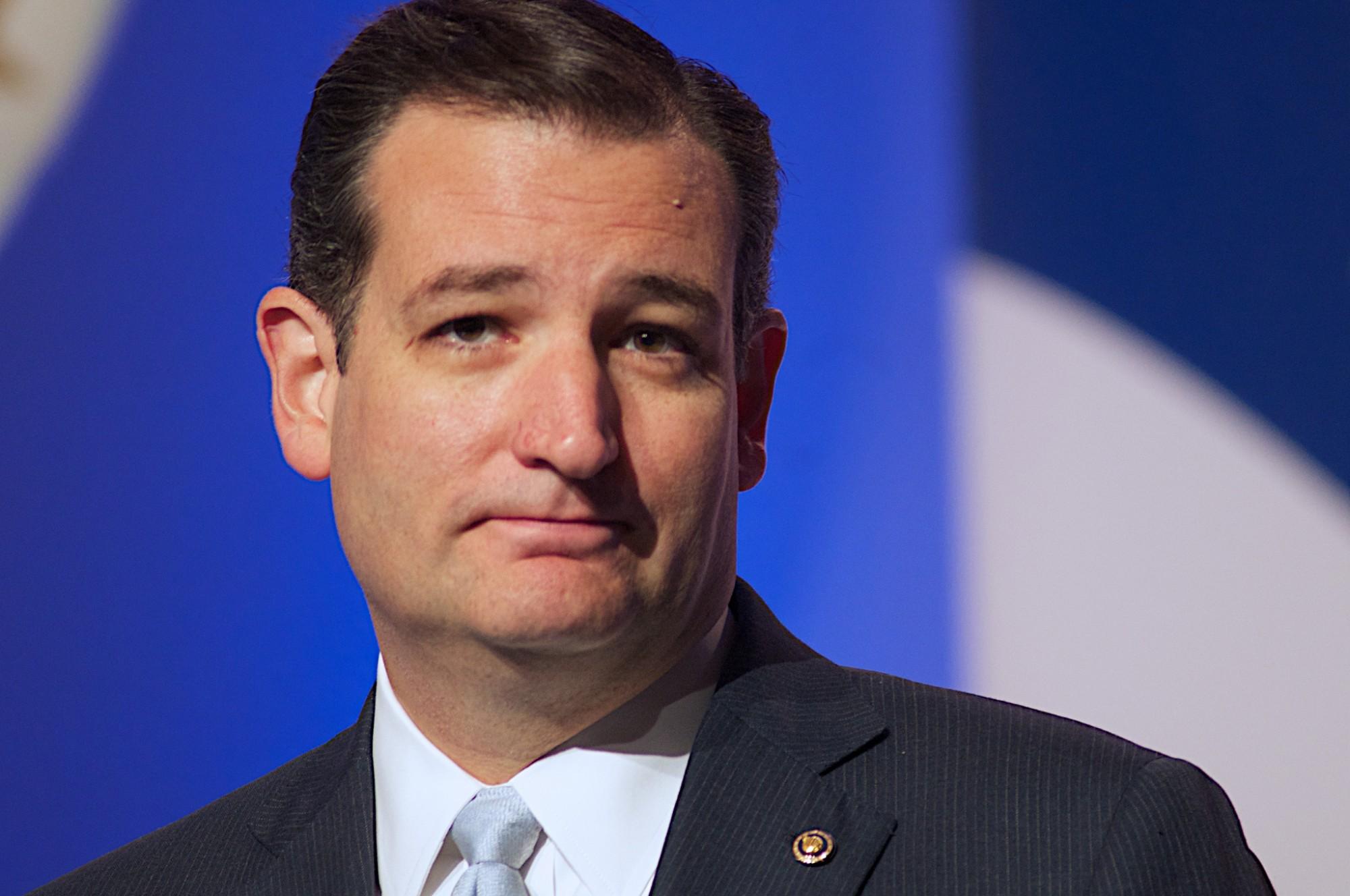 Ted Cruz: photo courtesy of Jamelle Boule