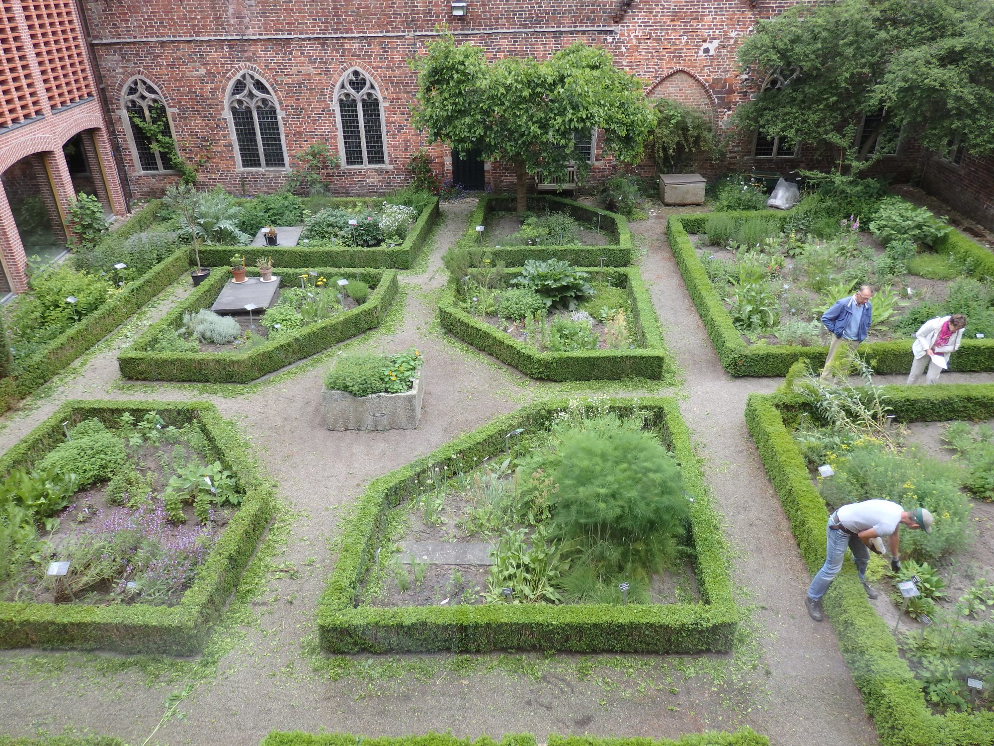 a view of the interior garden at Ter Apel Cloister. You can see a bit of the new addition on the left.