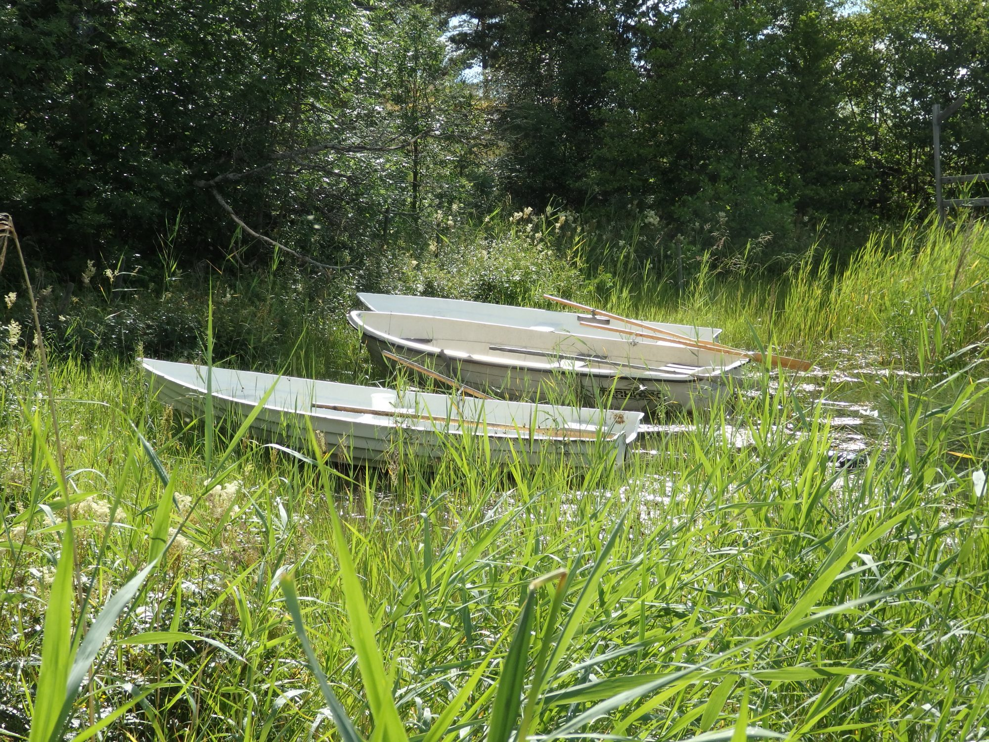 rowboats, Nasslingen Island, Sweden