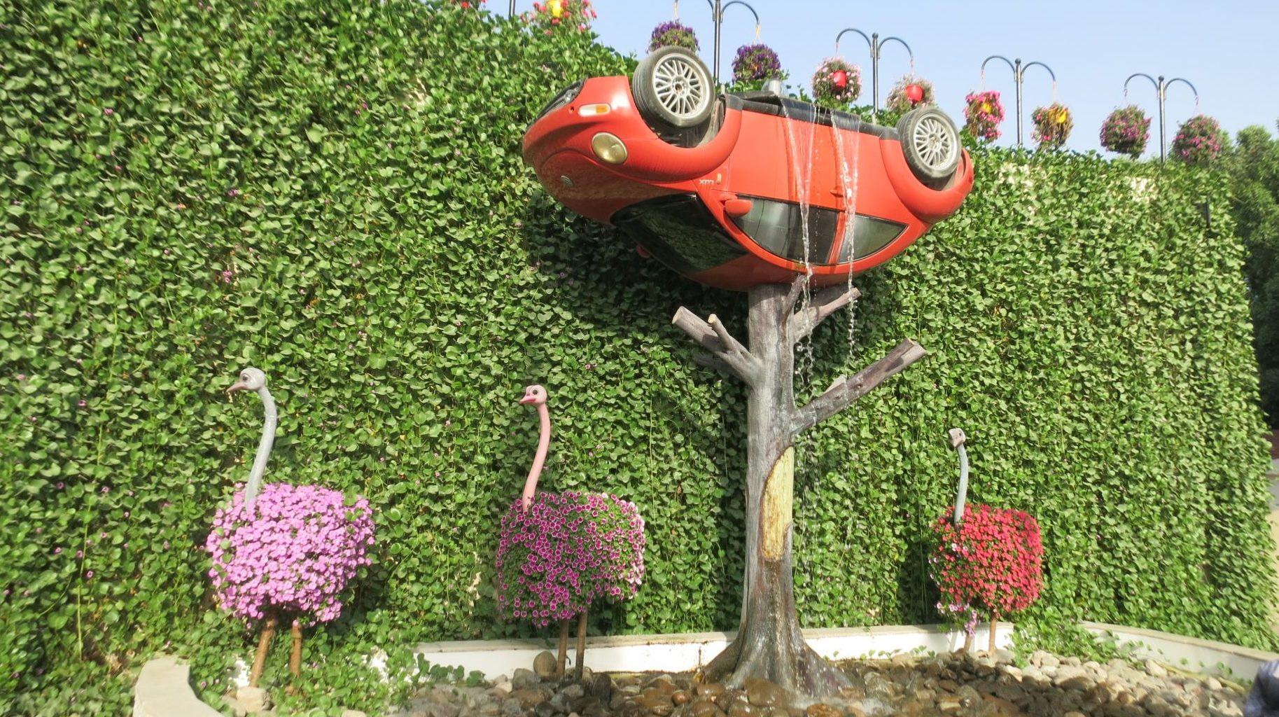 An upside-down VW beetle fountain, with three ostriches, at the Dubai Miracle Garden