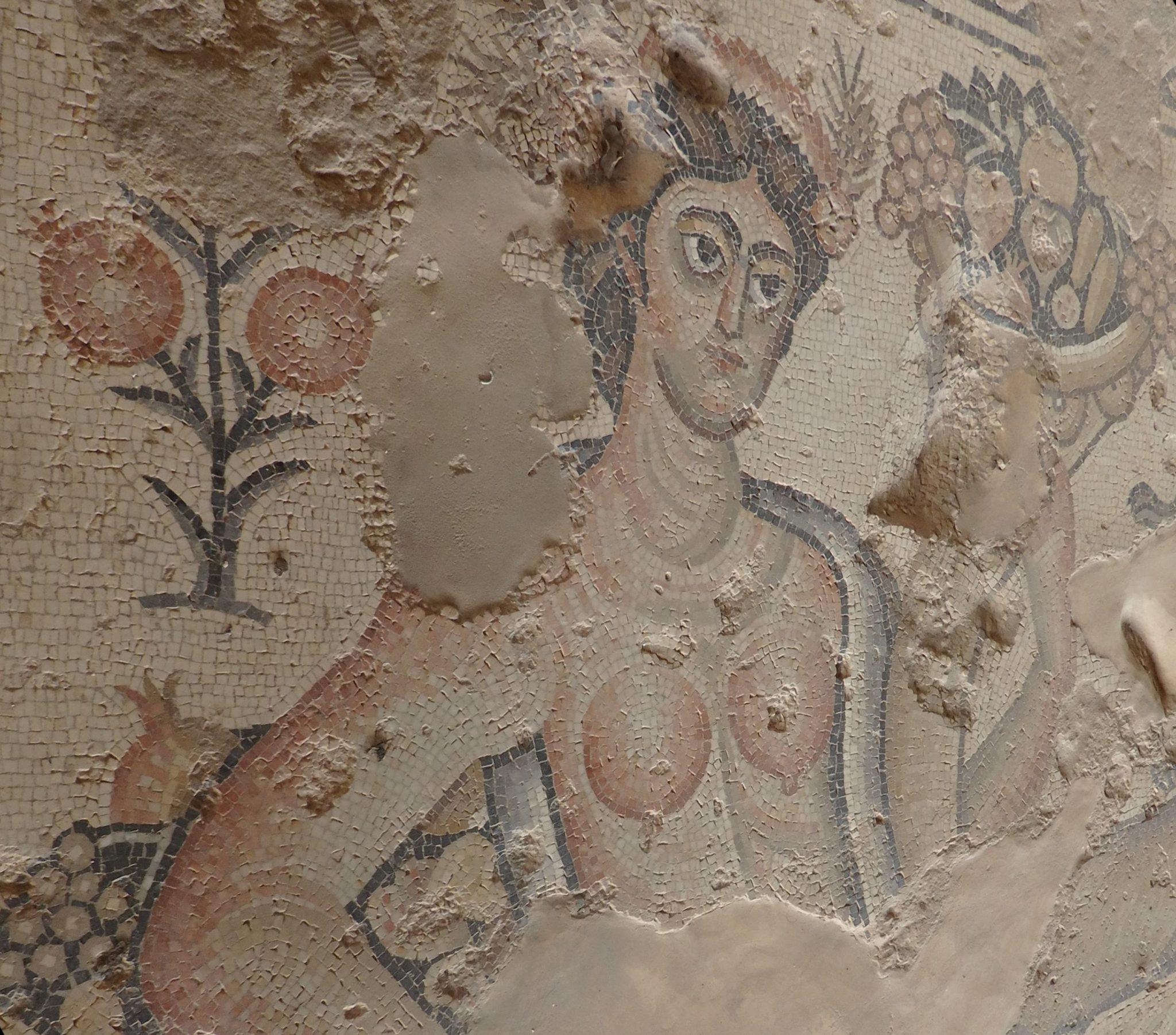 Another mosaic at Zippori National Park