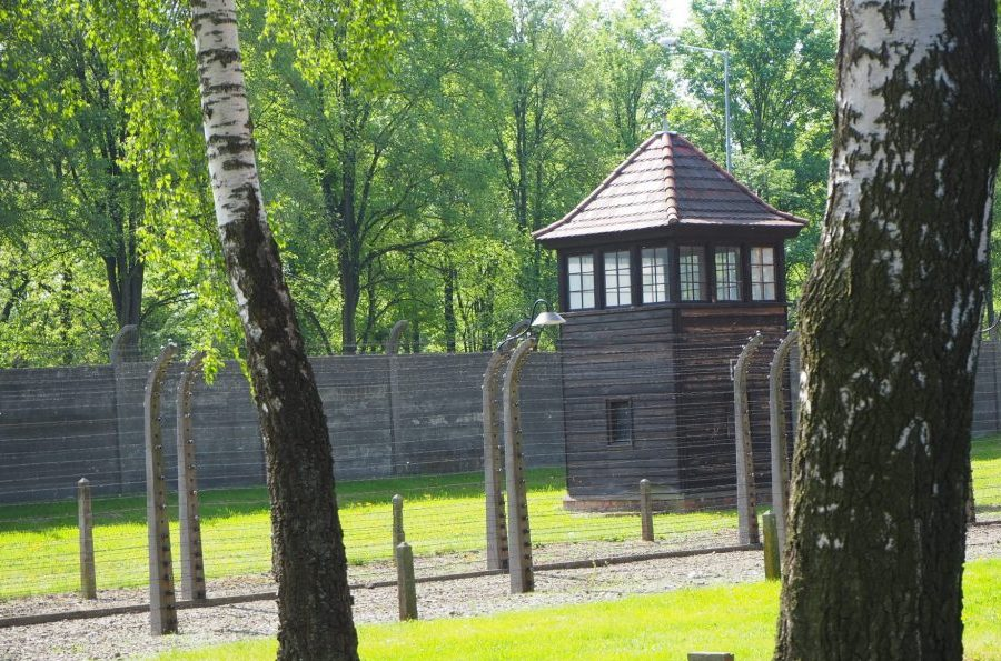 Guardhouses and rows of barbed wire edge Auschwitz I and Auschwitz II. The guardhouse is low and square with windows on all sides under the pointed roof. The barb-wire is in two lines, with curved posts. Tree trunks in the foreground.