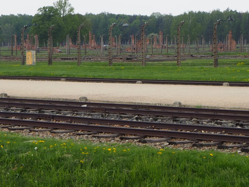 The tracks cross the bottom of the picture. In the background, the field has no structures, only the vertical posts of the barbed-wire fences and the vertical remains of chimneys.