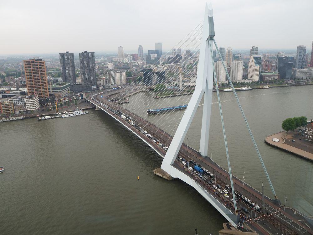 The Erasmus Bridge, as seen from De Rotterdam on the Wilhelminapier.