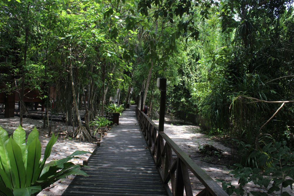 The boardwalk that runs behind the row of bungalows at Lankayan Island Resort. Photo courtesy of Albert Smith.
