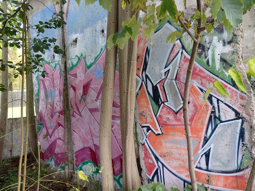 These segments of the Berlin Wall are surrounding by saplings and painted with graffiti
