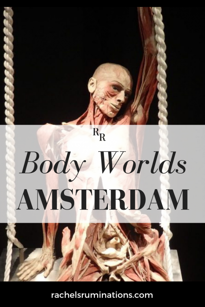 Pinnable image: Visiting Body Worlds Amsterdam is not like visiting any other museum. Even viewing a painting like Rembrandt's The Anatomy Lesson isn't the same.