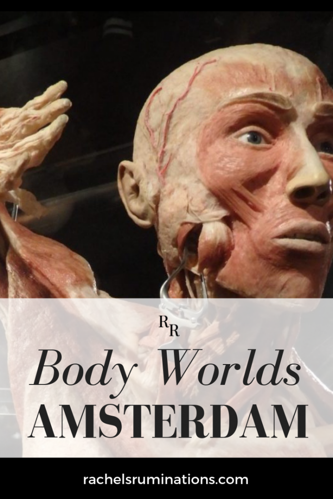 Visiting Body Worlds Amsterdam is not like visiting any other museum. Even viewing a painting like Rembrandt's The Anatomy Lesson isn't the same. #bodyworlds