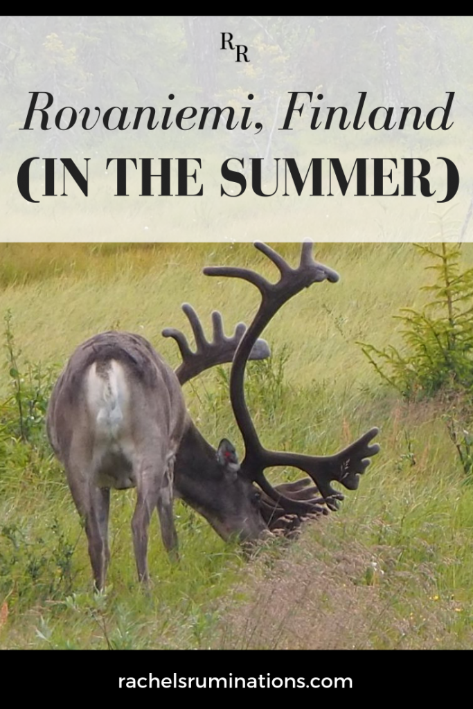 Pinnable image Text: Rovaniemi, Finland (in the summer) Image: a reindeer with enormous antlers, grazing.