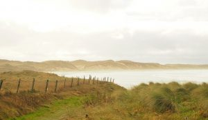 A brown, misty view from the land, overlooking a curved bay, with low brown land beyond.