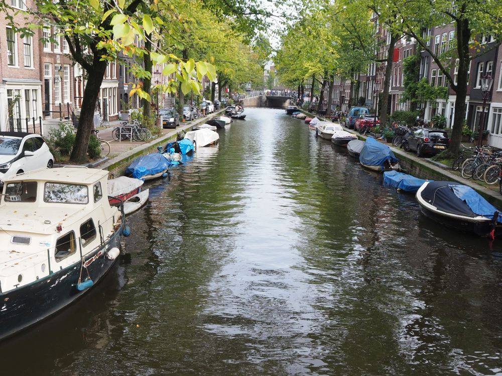 A view down a canal. Canal houses are visible on each side as well as a row of green-leafed trees next to the canal. IN the water, each side is lined with moored small boats.
