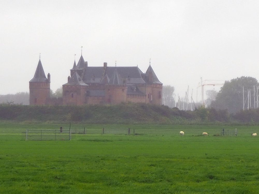 A hazy view of Muiderslot Castle across a green field dotted with grazing sheep. The castle has pointed towers and beyond it, in the haze, cranes and sailboat masts are visible.