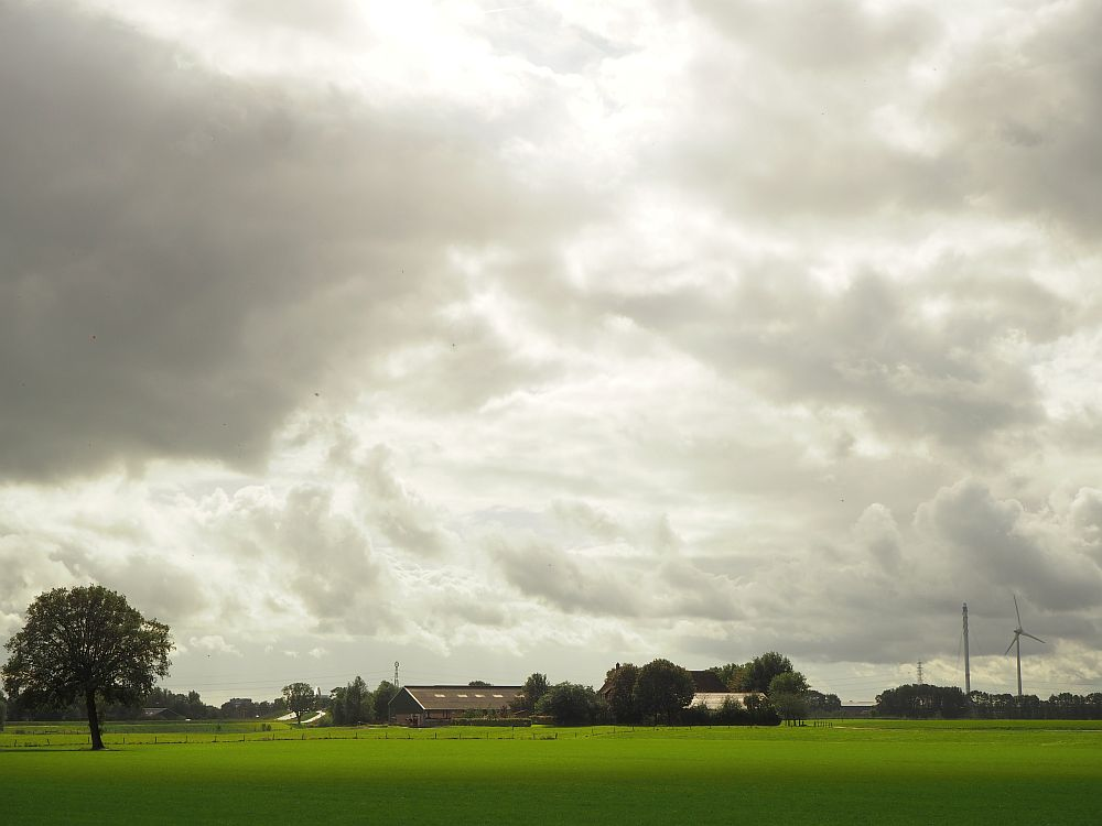 At the bottom of the photo is a flat, green field with in the background, a cluster of low buildings surrounded by trees: a barn and farmhouse. To the left is a lone tree in the field and to the right is a tall windmill.