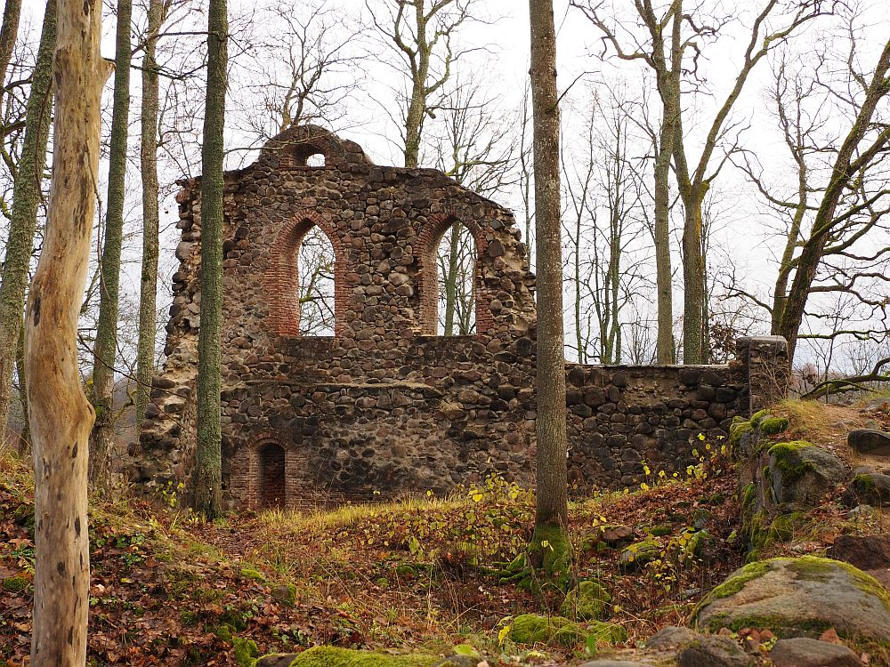 One stone wall stands, with two remaining arched window frames. Trees grow all around and through the piles of rocks around the wall.