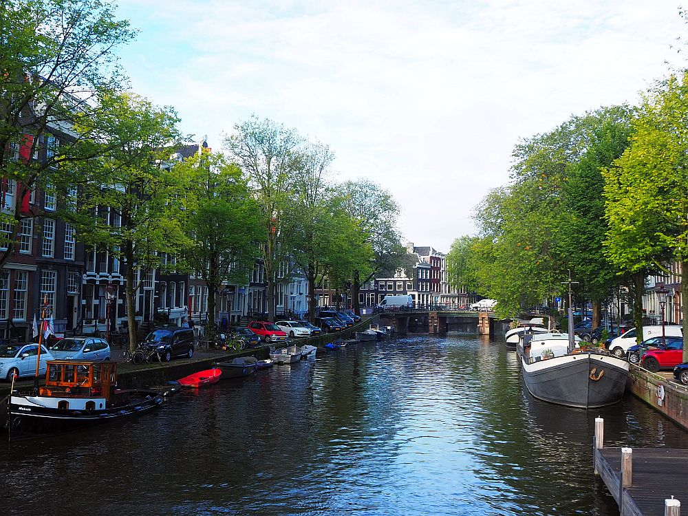 A typical view of a canal in the old part of Amsterdam: water down the middle with row houses on either side. Along the banks, between the rows of houses and the water, are rows of green trees, and a narrow road between the trees and the houses has cars parked along it. Boats are moored along either side of the canal.