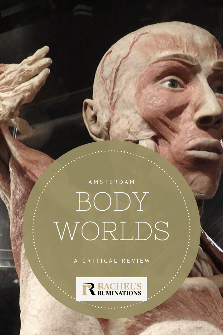 "At Body Worlds Amsterdam we are viewing actual dead bodies, called ""plastinates."" Is this entertainment? Education? Or just a freak show? A critical review. #bodyworlds #Amsterdam via @rachelsruminations"