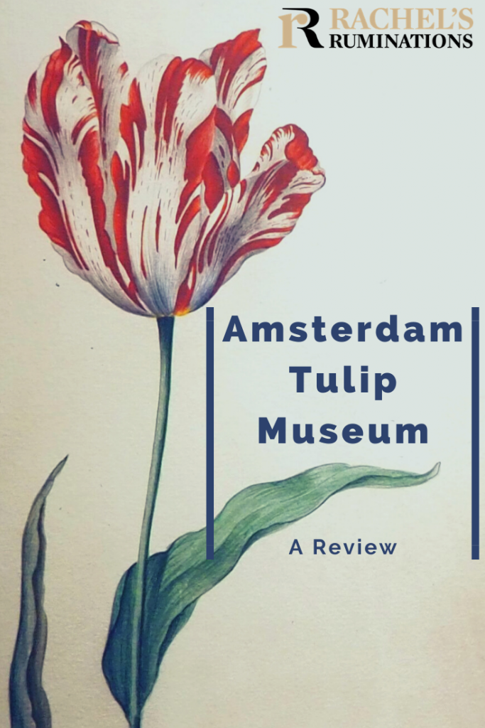 "Pinnable image Text: Amsterdam Tulip Museum: A review (and the Rachel's Ruminations logo) Image: the ""broken"" red tulip"