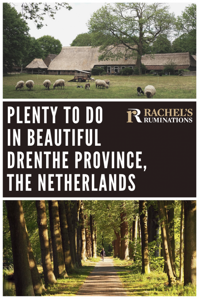 Pinnable image Text: Plenty to do in beautiful Drenthe province, the Netherlands Images: above: the farmhouse with sheep at Orvelte. Below, the tree-lined path at Havezate Mensinge.