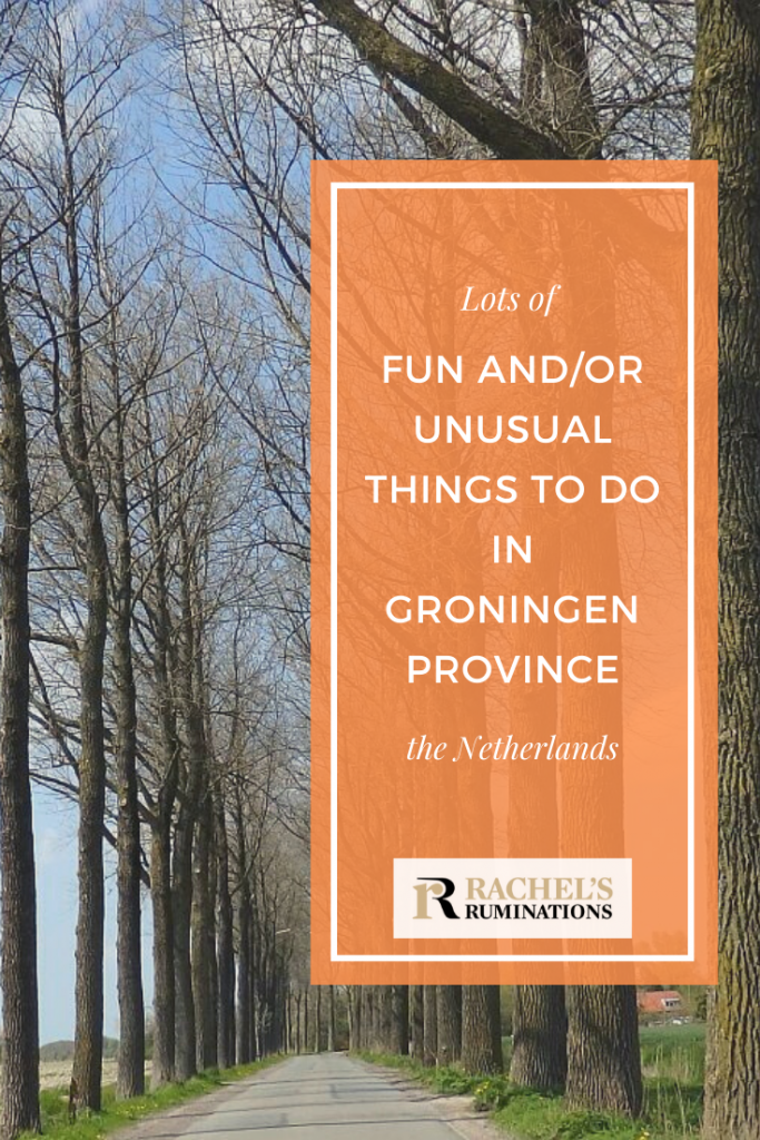 Pinnable image Text: Lots of fun and/or unusual things to do in Groningen province, the Netherlands. Image: a road going straight ahead into the distance, a row of trees without leaves lining either side.