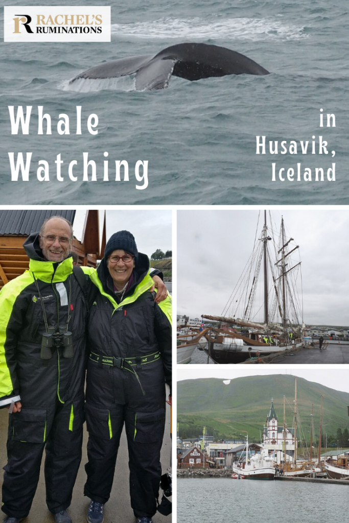 Pinnable image Text: Whale watching in Husavik, Iceland Images: top: a whale's tail in grey water. Left, the picture of Albert and me in the coveralls. Right, 2 smaller pictures: One of the ship and one of the harbor