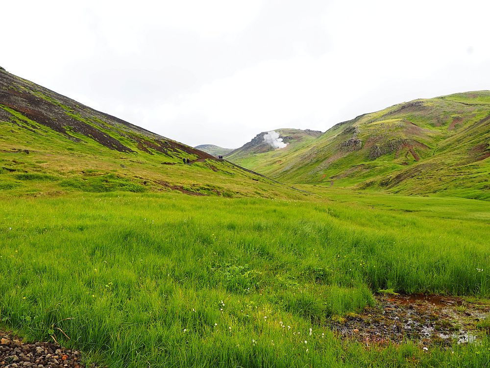A grass-covered valley stretches ahead with hills, also grass-covered, on either side. The sky is white and a cloud of steam is visible down the valley.