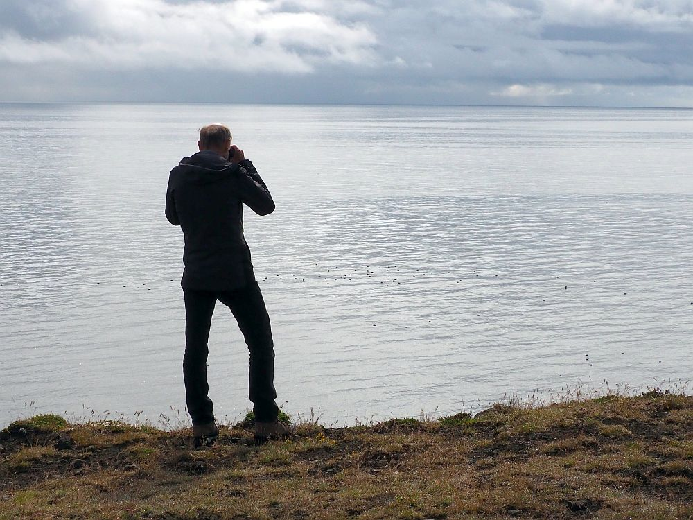 The edge of a cliff, with just the sea and the cloudy sky beyond. On the edge stands Albert, back to the camera. He is peering through his binoculars at birds that look like dots floating on the surface of the sea.