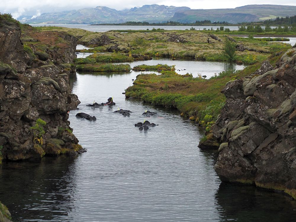 The rift here is filled with water; rocky shores on each side. A group of people in drysuits lie on the water, snorkeling.
