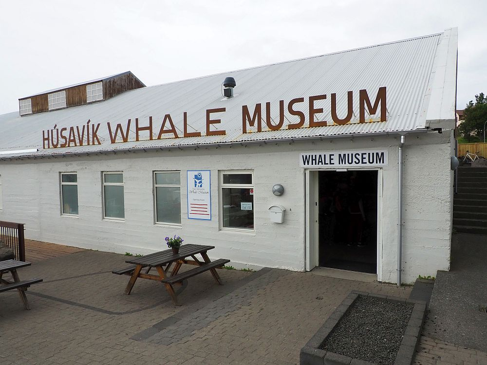 The building that houses the Husavik Whale Museum is whte painted, long and low, with its name in big lettering along the roof edge.