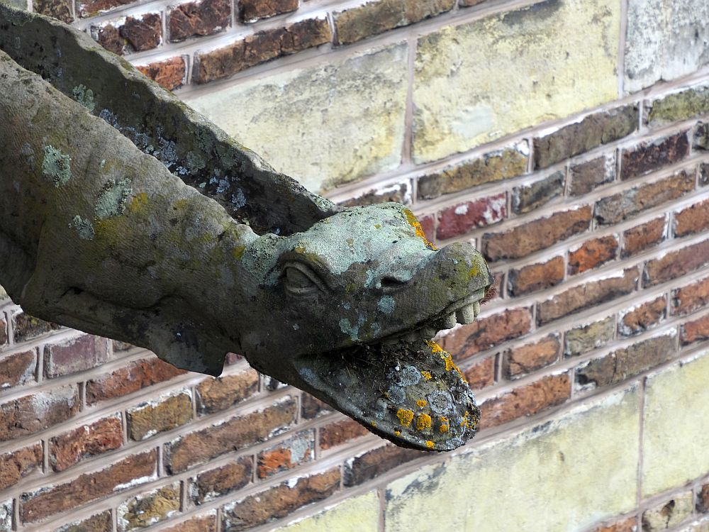 A waterpipe with the face of a lizard or alligator or similar, its mouth wide open showing its teeth.